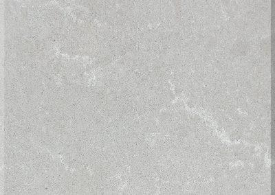 Grey Savoy